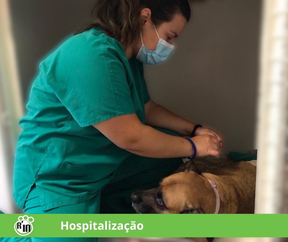 hospitalizacao_img