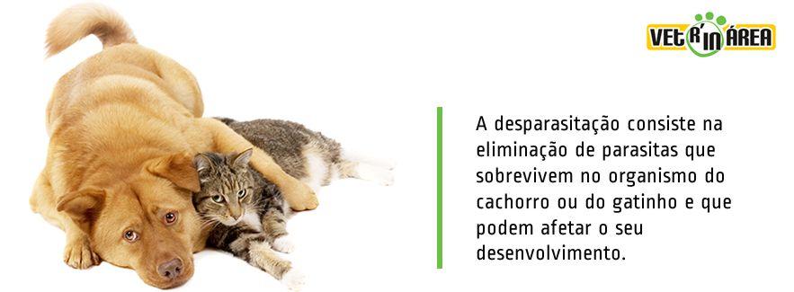 capa_desparazitação_img