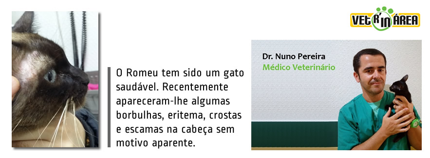 caso_clinico_dr_nuno02_img