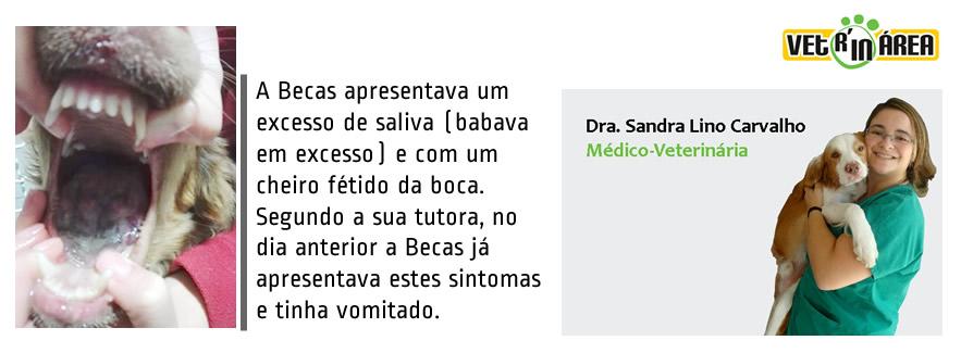 caso_clinico_dr_sandra1_img